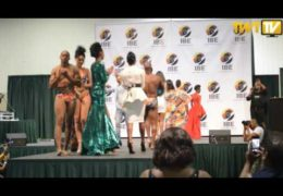 2016 INDIANA BLACK EXPO FASHION SHOW PT3
